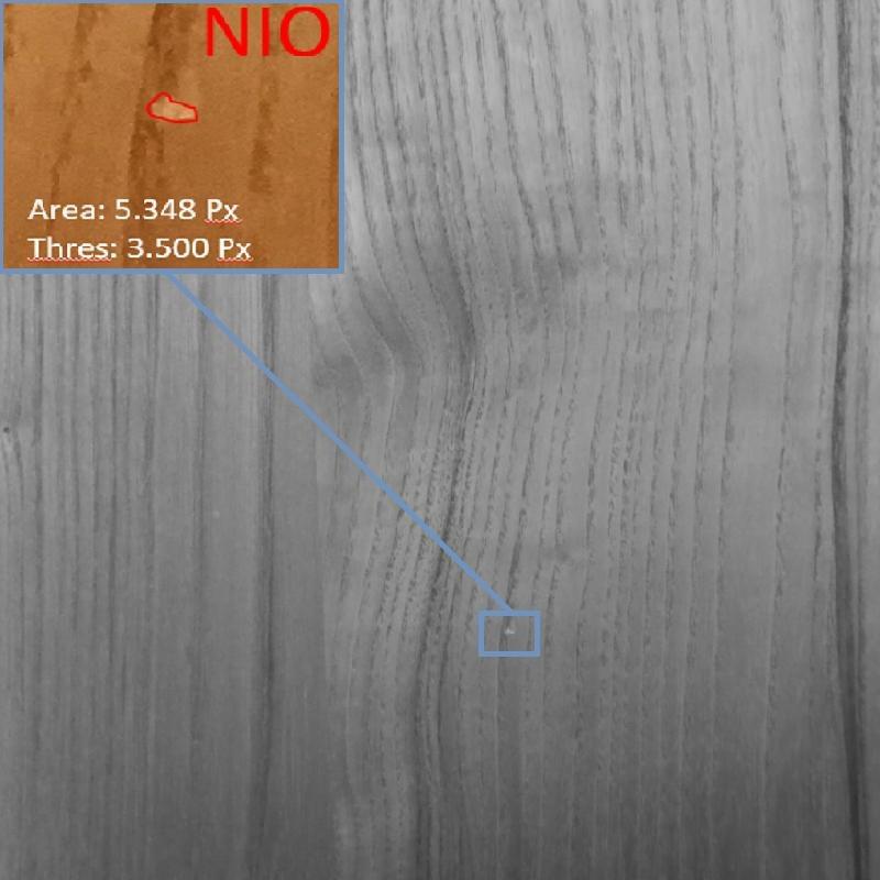 Holz Inspektion